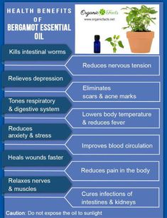 Health Benefits of Bergamot Essential Oil #Bergamot oil can be used in the treatment of depression, stress, tension, fear, hysteria, infection (all types including skin), anorexia, psoriasis, eczema and general convalescence. #health #benefits #uses