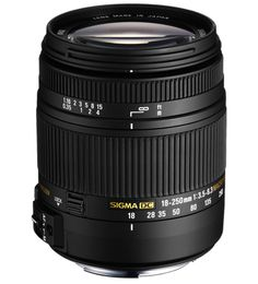 18-250mm F3.5-6.3 DC (OS)* MACRO HSM - my Go To lens.