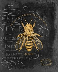 Honey Bee Wall Art by Chad Barrett from Great BIG Canvas. Vintage Bee art in classic home decor palette. Wall Art Prints, Framed Prints, Canvas Prints, Big Canvas, Honey Bee Drawing, Chad Barrett, Bee Illustration, Vintage Bee, Vintage Wall Art