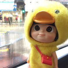 雨繼續下,要記得帶雨傘,因為你不是鴨鴨,沒有羽毛防水啊
