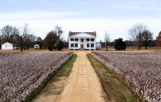 10 Inexpensive Road Trip Destinations In Mississippi That Won't Break The Bank