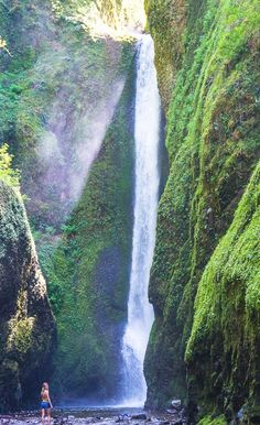 Oneonta gorge in Columbia River, Oregon 10 best waterfall hikes that are a must see for anyone visiting Oregon. Oregon Vacation, Oregon Road Trip, Oregon Travel, Vacation Spots, Travel Usa, Oregon Hiking, Portland Oregon Hikes, Backpacking Oregon, Oregon Usa