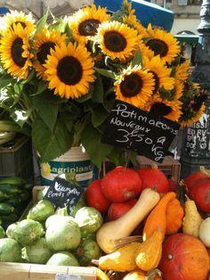 Jour de marché à Aix-en-Provence Sunflowers / Squash & more offered for sale in a little town of Aix in Southern France near the Provence-Alpes-Côte d'Azur,
