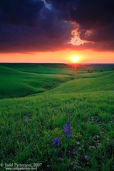Konza Prairie Sunset ~ By Judd Patterson