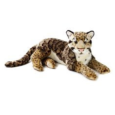 Let your little ones explore the animal kingdom with this National Geographic Clouded Leopard Plush by Lelly. National Geographic, Clouded Leopard, Cheetah, Tropical Forest, Animal Facts, Animal Fun, Plush Animals, Stuffed Animals, Small Cat