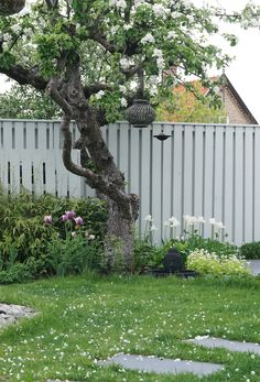 Dags for tradgards.From Add Simplicity Sweden Garden Fencing, Garden Paths, Garden Landscaping, Garden Trees, Trees To Plant, Fence Design, Garden Design, Baumgarten, Little Gardens