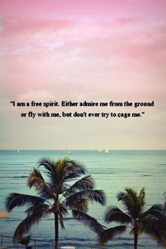 I'm a free spirit, either admire me from the ground or fly with me but don't ever try to cage me.