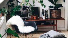 6 tendencias deco que son furor en Pinterest  Verde que te quiero verde.