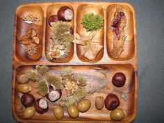 Nature tray, this is the kind of tray I use at school, handy for different collections, but still together. you can find wooden trays in op-shops. (ELM)