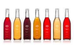 Ethical Soda - Glasfurd & Walker : Concept / Graphic Design / Art Direction : Vancouver, BC