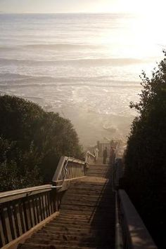 Mesa Lane Steps in Santa Barbara... my favorite place to find peace of mind by Divonsir Borges