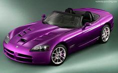 Purple Sports