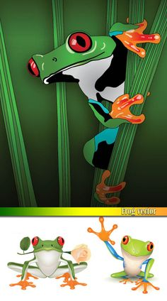 #frog #CLIP-ART #animals  Image Source Page: http://mocii.com/free-vector-graphics/frogs-clip-art/