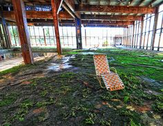 Sneak a Peek Inside the Beautifully Abandoned and Overgrown Gr...