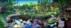 A vibrant shot of the Japanese Garden at Brisbane Botanical Gardens, Mt Coot-tha.