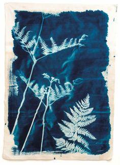 Large Cyanotype print on cotton, Hannah Lamb, Poetic Cloth Sun Prints, Nature Prints, Cas Holmes, Artist Sketchbook, Textiles, Cyanotype, Wedding Tattoos, Fabric Manipulation, Textile Artists