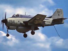 After An Extraordinary Career Blasting Submarines The Last Airworthy Fairey Gannet Flies Again - World War Wings