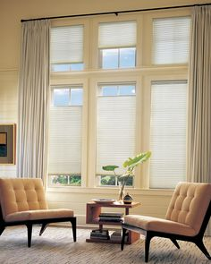 Applause Honeycomb Shades - exquisite, functional and gets the job done! www.maryettadesigns.com