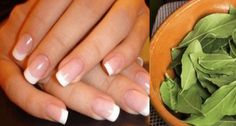 My Nails, Health, Fitness, Health Care, Salud