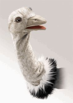 """Folkmanis Puppet Stage Ostrich~Folkmanis 2872 - Long eye lashes and a soft sueded beak make this Ostrich Stage Puppet proud to pull her head out of the sand and join in on some puppet fun! Measures 17"""" long.Recommended for 3 years and up. Made in China."""