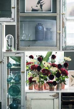 Möchten Sie mehr wissen über der Chrysantheme? Schauen Sie dann bitte diese Link an: http://www.heyl.nl/website/detail/652/