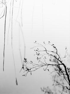 Mirror o mirror by *JakezDaniel. S)