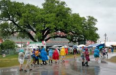 The second week of the New Orleans Jazz Festival got underway Thursday, April 28, 2016, with rain and cloudy skies.