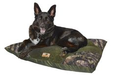 "The Masterpaws® 30"" x 40"" Camo Pet Bed provides your pooch  with a pleasant night's sleep. Each bed is filled with 100% recycled polyfiber fill, which helps your pup stay comfy and cozy throughout the night. And, you can keep it clean by simply removing the water-resistant cover and tossing it in the washing machine with the rest of your laundry."