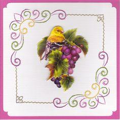 vogel op druiventros