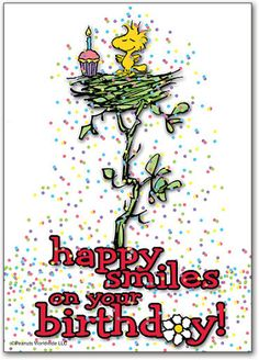 "'Happy Smiles on your Birthday!"", Woodstock and Charlie Brown Happy Birthday 1, Snoopy Birthday, Happy Birthday Images, Happy Birthday Greetings, Birthday Pictures, Birthday Messages, Peanuts Happy Birthday, Birthday Bash, Snoopy Love"