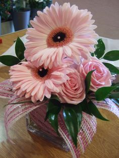 Collection of pink gerbera.