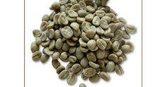 Yeşil kahve mucizesi, Türkiye'de bayanların son gözdesi olan zayıflatan kahve olarak bilinen Yeşil Kahve kilolardan kurtulmanın yeni bir habercisi olarak karışımıza çıktı. Dünyaca ünlü Türk doktor 'yeşil kahve ile zayıflayın' sözleri ile Tüm dünya da ses getirdi. Amerika'da yayınlanan bir TV programında yeşil kahveden söz eden Türk doktor bu sözleri ile zayıflamak isteyen bayanları harekete geçirdi.  http://www.haberci.org/haber/fazla-kilolarinizdan-kurtulun-7065.html