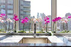 orchidée dans une cuisine - Recherche Google