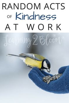 Random Acts of Kindness at work. Ideas for a positive work environment. Plus, a free compliment poster Environment Quotes, Positive Work Environment, Single Parenting, Parenting Advice, Single Mom Dating, General Quotes, Helping Others, Workplace, Random Acts