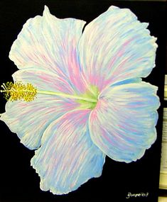 """White Hibiscus""  painted on 16"" x 20"" gallery canvas."