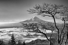 Mt. Fuji! 😍 . . . . #japan #japón #japon #nippon #igers #instadaily #instatravel #travel #photography #love #picoftheday #landscape #🇯🇵 #photographer #日本 #instagood #素敵 #jco #japancommunity #visitjapan #amazing #traveling #travelphotography #travelgram #amazingview #madeinjapan #traditional #japanese #fuji #mountain