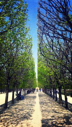 Jardin Palais Royale Gardens (75001 Paris)