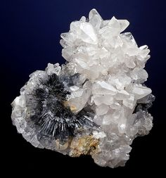 Calcite crystals in cluster with an embedded radial spray of Stibnite crystals // San Martín Mine, San Martín-Sabinas District, San Martín, Mun. de Sombrerete, Zacatecas, Mexico