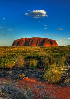 Visiting Australia's red centre has been one of the best weekend trips I have ever made! I went on an organised tour and it offered amazing scenery, aboriginal culture, and stunning sunsets.   In this blog post, I will show you the some of the must-see and must-do when you are visiting Australia's red centre. Must-see and experience destinations within the red centre are Ayers rock, Kaya Tjuta and Kings Canyon.