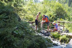 Erleben Sie die Natur bei abwechslungsreichen Wanderungen. Bergen, Mountains, Nature, Travel, Glamour, Mountain Landscape, Summer Vacations, Tours, Viajes