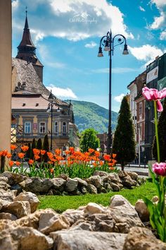 Transylvania with kids in summer can be fun and educative. This top 10 is all you need for a well-spent summer with your children in Transylvania. Best Places To Travel, Places To See, Solo Travel, Travel Europe, Shopping Travel, Travel Deals, Budget Travel, Brasov Romania, Chateau Medieval