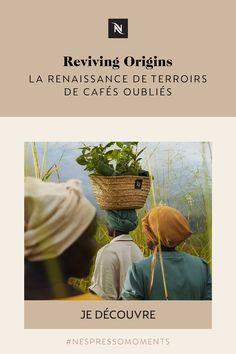 Renaissance, Nespresso, Zimbabwe, Congo, Innocent, Engagement, Uganda, How To Paint, Colombia