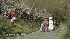 『人生、いろどり』予告編  徳島県上勝町で行われている「彩(いろどり)事業」の軌跡を描いた作品。  キャッチコピーは「もうヒトハナ、咲かそ。」でした。  http://www.irodori-movie.jp/