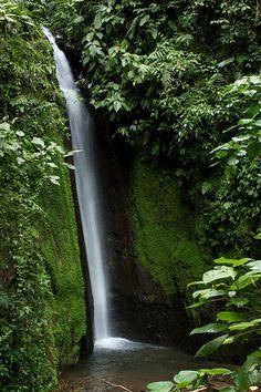Arenal, Costa Rica, 2012