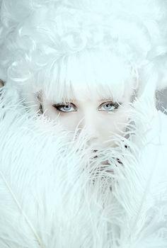 By winterwolfstudios