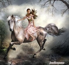 equine art images | com horse lovers php target _blank click to get more horse ...