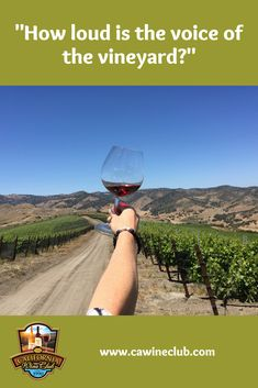 Have you ever wondered why two wines of the same varietal, year and region taste so different? Sonja Magdevski answers the question, Can you taste terroir? Wine Gift Boxes, Wine Gift Baskets, Wine Gifts, California Wine Club, Wine Education, Types Of Wine, Vintage Wine, Vintage Stuff, Wine Delivery