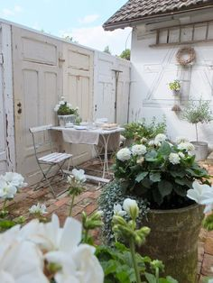 Lovely little patio garden with all white flowers.
