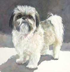 Isabella #ShihTzu #AdoredDogs #Dog #Art #Portrait #PetPortrait #Commission #watercolor