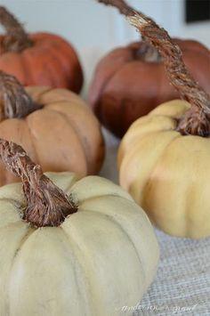 DIY Pumpkins with Realistic Looking Stems | www.andersonandgrant.com